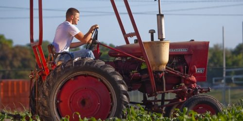 Man driving tractor in field